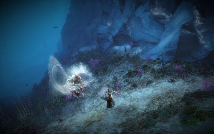 Guild Wars 2 : Kamohoali'i Kotaki