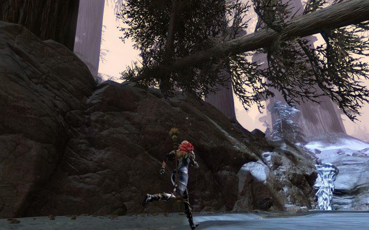Guild Wars 2 : Bitterfrost Frontier Joyless Falls