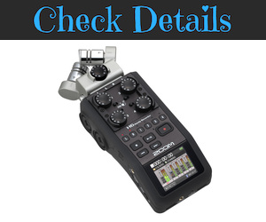 Zoom H6 Recorder Microphone